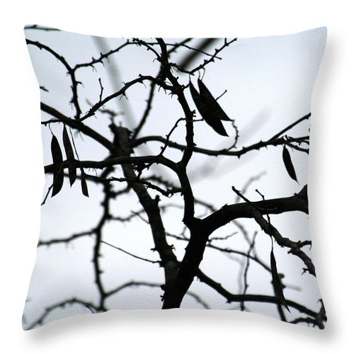 Red Bud Tree Throw Pillow featuring the photograph Tree Art Three by Wanda Brandon