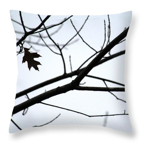 Red Oak Tree Throw Pillow featuring the photograph Tree Art Two by Wanda Brandon