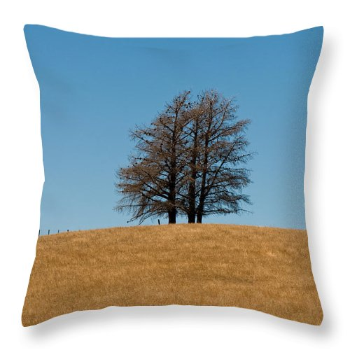Agriculture Throw Pillow featuring the photograph Tree Formation On A Hill Of Veldt by U Schade