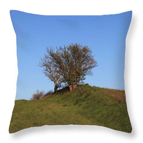 Tree Throw Pillow featuring the photograph Tree In The Country by Francesco Scali