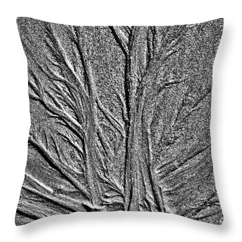 Sand Throw Pillow featuring the photograph Tree Of Life In The Sands Of Time Hdr Conversion by Glenn Gordon