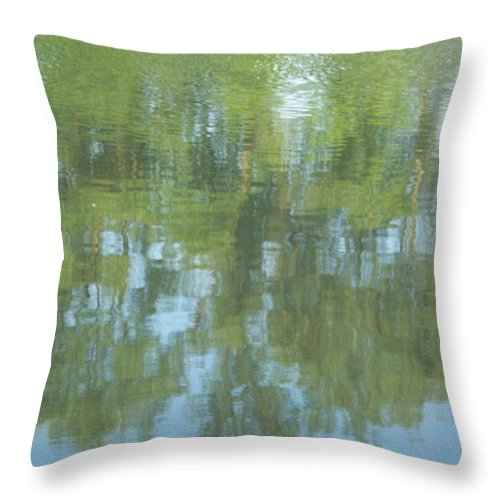 Throw Pillow featuring the photograph Tree Reflection by Nora Boghossian