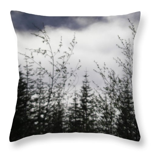 Trees Throw Pillow featuring the photograph Trees And Clouds by Catherine Helmick