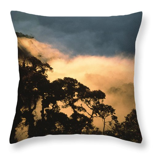 South America Throw Pillow featuring the photograph Trees And Mountaintops Above The Clouds by David Evans
