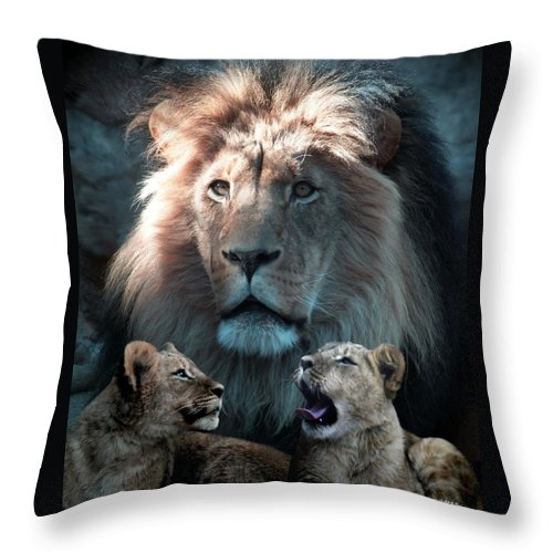 Lions Throw Pillow featuring the photograph Tribute To An Old Friend by Barbara Stephens