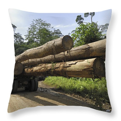 Mp Throw Pillow featuring the photograph Truck With Timber From A Logging Area by Thomas Marent