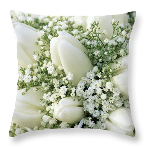 Fn Throw Pillow featuring the photograph Tulip Tulipa Sp And Babys Breath by Jan Vermeer