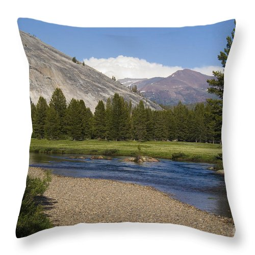 Forest Throw Pillow featuring the photograph Tuolumne Meadow by Jim And Emily Bush