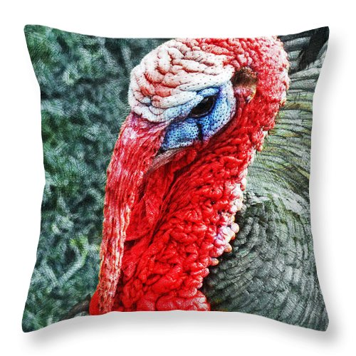 Turkey Throw Pillow featuring the photograph Turkey Brawn by Steve Taylor
