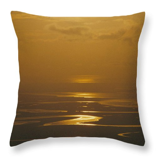 Scenes And Views Throw Pillow featuring the photograph Twilight Over A Wetland With Meandering by Bill Curtsinger