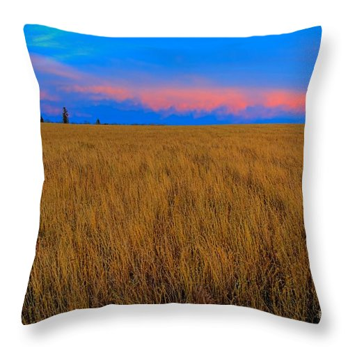 Alberta Throw Pillow featuring the photograph Twilight Pink by James Anderson