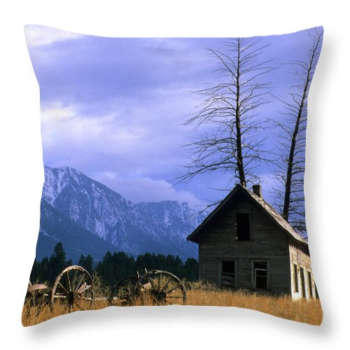British Columbia Throw Pillow featuring the photograph Twin Tree Cabin by Bob Christopher