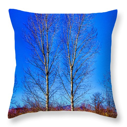 Denver Throw Pillow featuring the photograph Twin Trees At South Platte Park by David Patterson