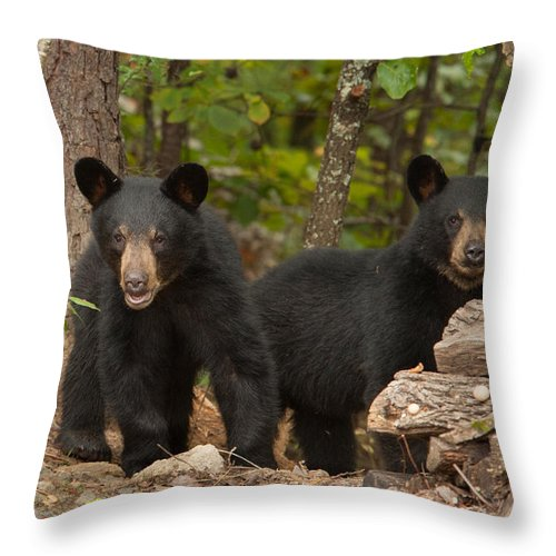 Portrait Throw Pillow featuring the photograph Twins by Joye Ardyn Durham