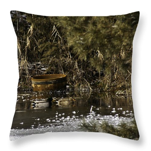 Throw Pillow featuring the photograph Two Ducks And A Tub Square by LeeAnn McLaneGoetz McLaneGoetzStudioLLCcom