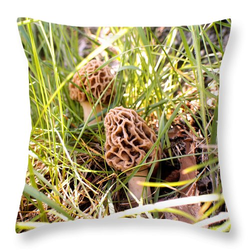 Morel Throw Pillow featuring the photograph Two Morels by Angie Rea