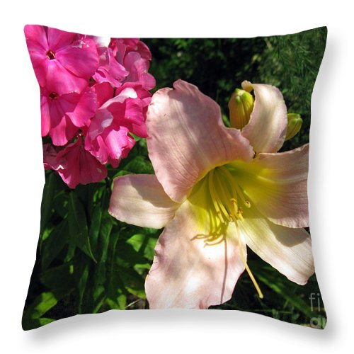 Flower Throw Pillow featuring the photograph Two Pink Neighbors- Lily And Phlox by Ausra Huntington nee Paulauskaite