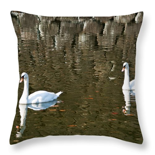 Animals Throw Pillow featuring the photograph Two Swan Floating On A Pond by U Schade