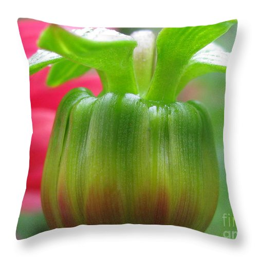 Flower Throw Pillow featuring the photograph Unreal Photography by Tina Marie