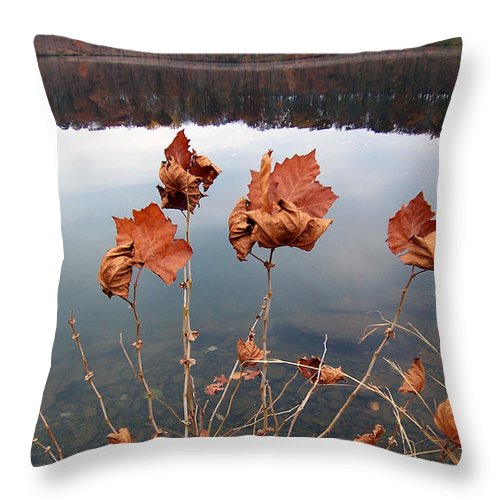 Leaves Dried Fall Autumn Water Lake Sky Reflection Hill Foothill Contrast Throw Pillow featuring the photograph Untitled 102 by Vilas Malankar