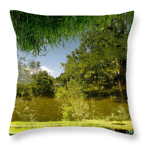 Holmesbrook Throw Pillow featuring the photograph Upside Down And Backwards by Trish Hale