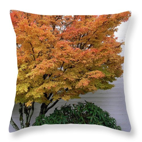 Maple Throw Pillow featuring the photograph Urban Fall by Pamela Patch