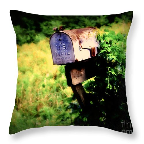 Mail Throw Pillow featuring the photograph U.s. Mail by Perry Webster