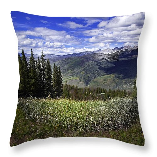 Vail Throw Pillow featuring the photograph Vail In The Summer by Madeline Ellis