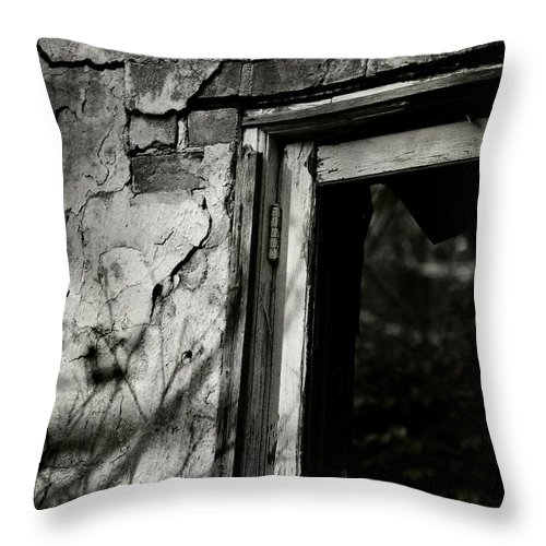 Conceptual Throw Pillow featuring the photograph Vestige by Rebecca Sherman