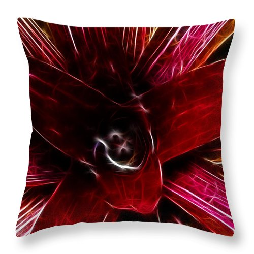 Succulent Throw Pillow featuring the photograph Vibrant Succulent Macro by Darleen Stry