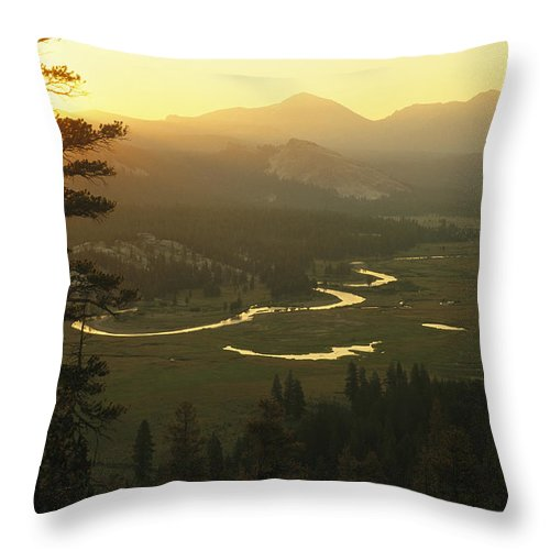 North America Throw Pillow featuring the photograph View At Dawn Of The Tuolumne River by Phil Schermeister