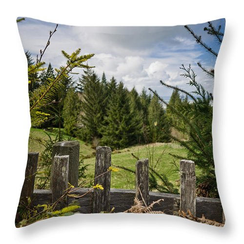 Mattole Road Throw Pillow featuring the photograph View From Picket Fence by Greg Nyquist
