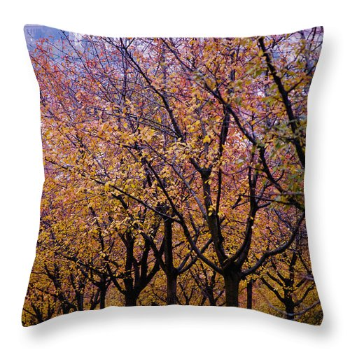 Beauty In Nature Throw Pillow featuring the photograph View Of Prague From Mala Strana Park by Axiom Photographic