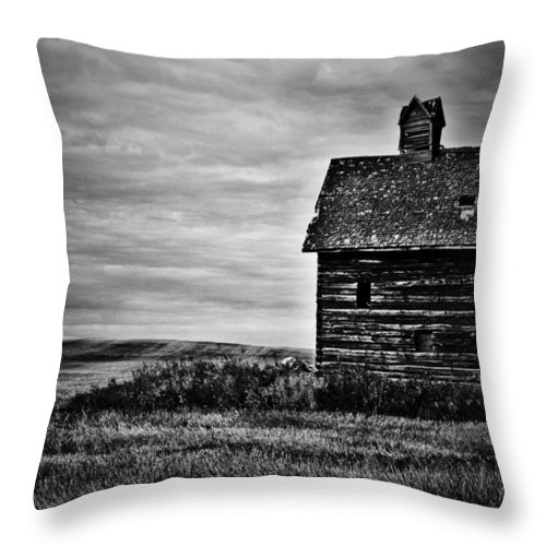 Photographer Throw Pillow featuring the photograph View Of You by The Artist Project