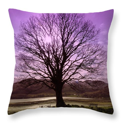 Tree Throw Pillow featuring the photograph Village Green Tree by Lynn Bolt