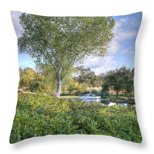 Amador County Throw Pillow featuring the photograph Vines And Trees by Diego Re
