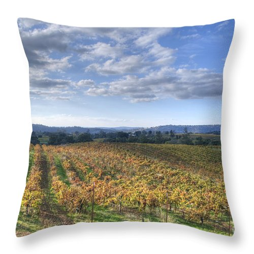 Vines Throw Pillow featuring the photograph Vines In Fields by Diego Re