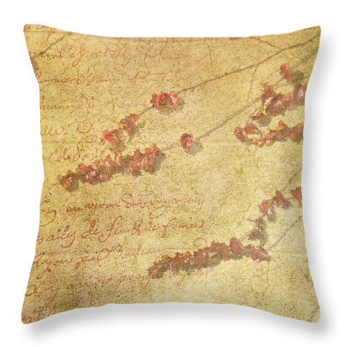 Vines Throw Pillow featuring the photograph Vines On The Wall by Carolyn Fox