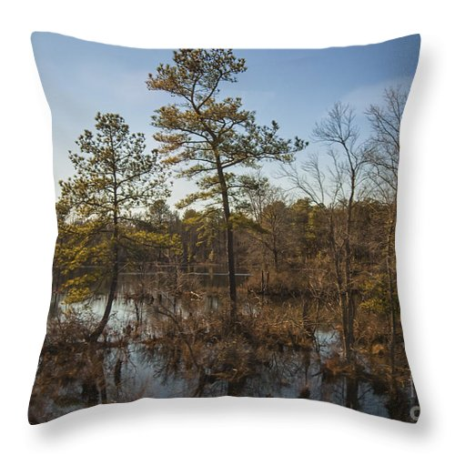 Alexandria Throw Pillow featuring the photograph Virginia Swamp by Jim Moore