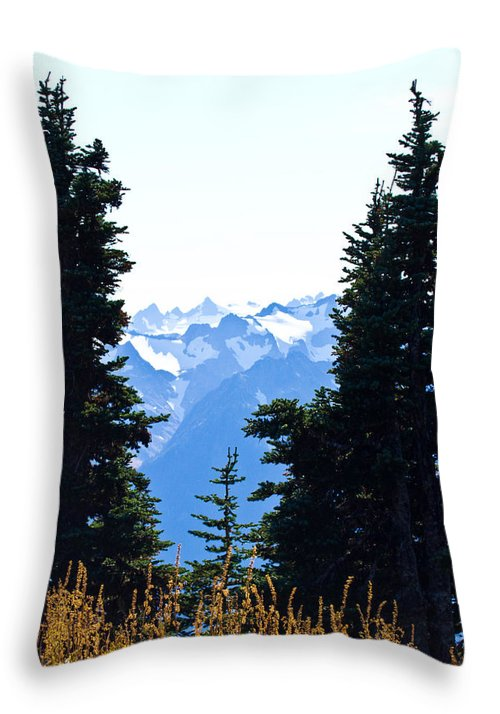 Vistas Throw Pillow featuring the photograph Vistas Along The Trail by Marie Jamieson
