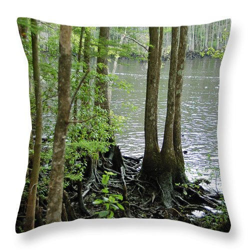 Waccamaw River Throw Pillow featuring the photograph Waccamaw View II by Suzanne Gaff