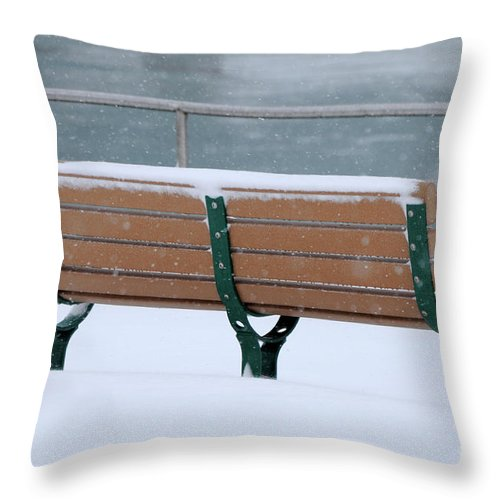 Bench Throw Pillow featuring the photograph Waiting For Summer by Ronald Grogan
