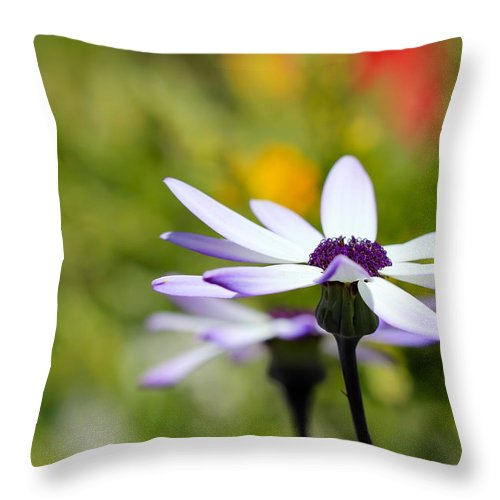 Flowers Throw Pillow featuring the photograph Waiting by Heidi Smith