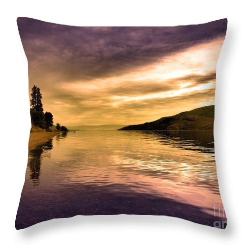 Reflections Throw Pillow featuring the photograph Waiting With The Light by Tara Turner
