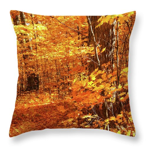 Autumn Throw Pillow featuring the photograph Walking Through The Maple Trees by Sandra Cunningham