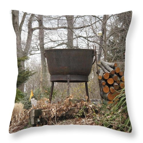 Throw Pillow featuring the photograph Warmth For The Lost by Michele Nelson