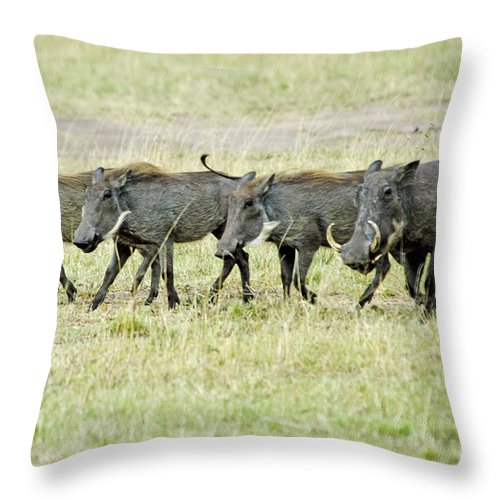 Warthogs Throw Pillow featuring the digital art Warthogs In Masai by Pravine Chester