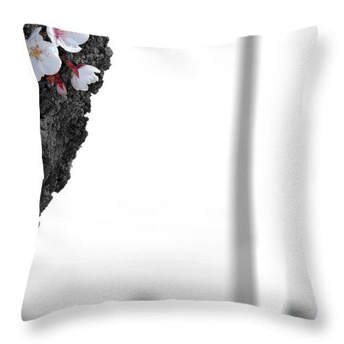 Washington Throw Pillow featuring the photograph Washington Blooms by Kelvin Booker