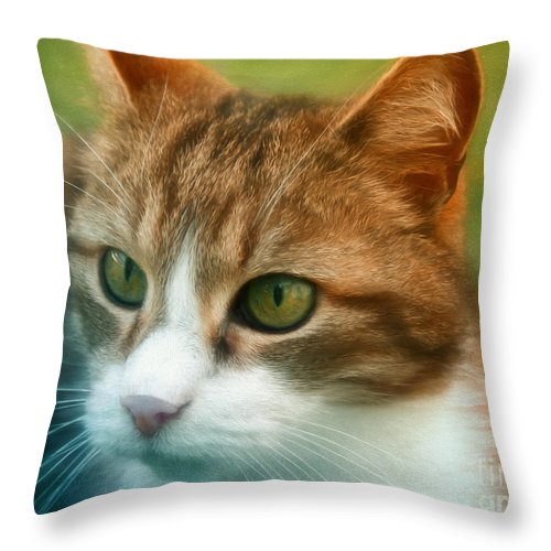 Painting Throw Pillow featuring the digital art Watchful by Jutta Maria Pusl