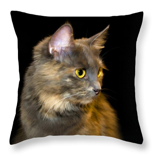 Cat Throw Pillow featuring the painting Watching The Sunset by Steven Richardson